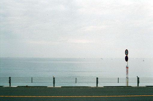 爱情语录:风景如何,其实并不重要。重要的是,你在我的身边