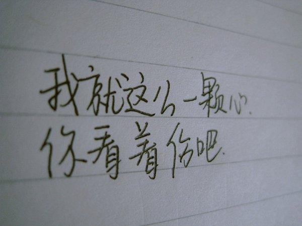 文字图片:看见,彼岸花开,蝶起蝶落