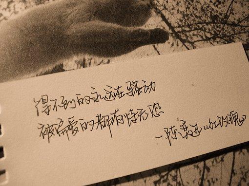 手写文字图片:有个人,爱过了就结束了;有道伤,痛过了就麻木了