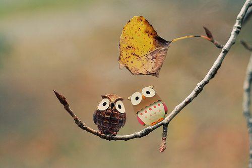 晚安心语:真正爱你的人不会说许多爱你的话,却会做许多爱你的事