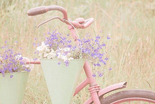 早安心语:活得平和,才能在心里装下满满的幸福