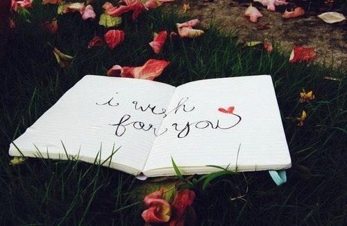 生活语录:仅仅活着是不够的,还需要有阳光、自由,和一点花的芬芳
