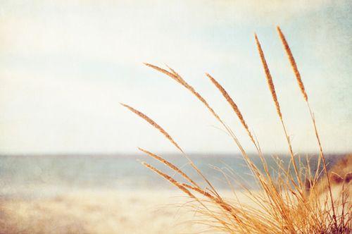 晚安心语:听说幸福很简单,简单到时间一冲就冲淡