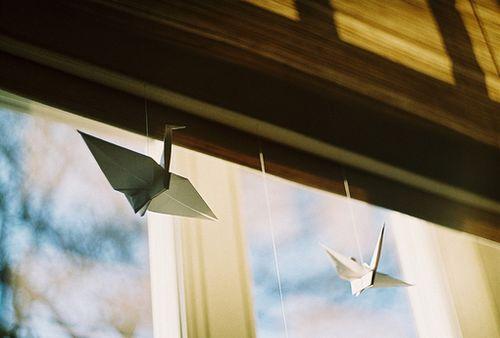 晚安心语:越长大越是越是小心翼翼,越是瞻前顾后,越是脆弱