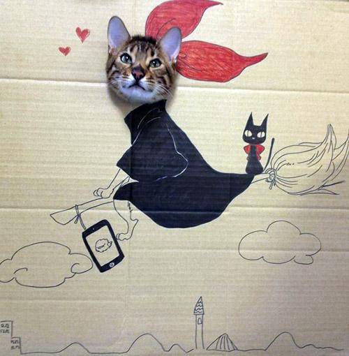 萌宠图片第71期:独特猫猫手绘Cosplay照片