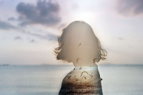 心灵感悟:静静的优雅