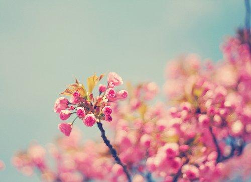 晚安心语:有时候,我们追寻更多的东西,却忘了我们已经拥有的一切