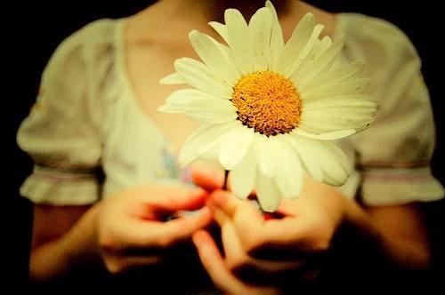 爱情文章:就是爱你,不需要理由