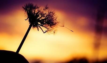 心灵感悟:夜雨诗意