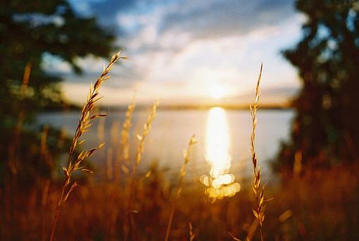 早安心语:有一天你会明白,善良比聪明更难。聪明是一种天赋,而善良是一种选择