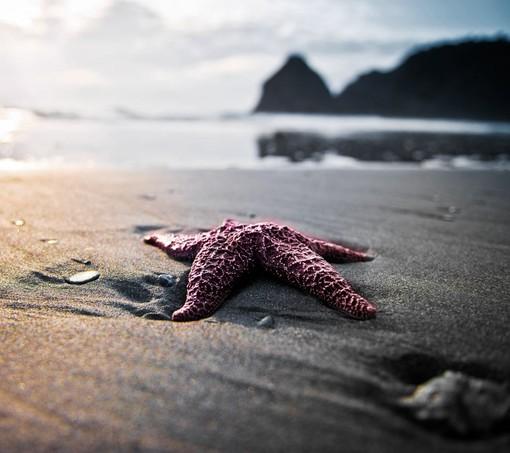 美文摘选:把烦恼写在沙滩上