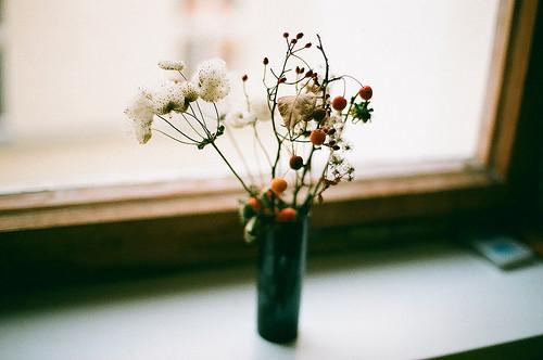 当爱情缺席的时候,你要学着好好生活,好好爱自己