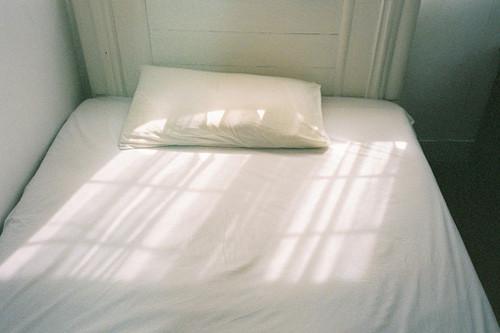 早安心语:终日看天不举头,桃花烂漫始抬眸。饶君更有遮天网,透得牢关即便休