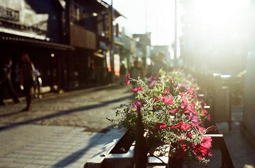 早安心语:人生中出现的一切,都无法占有,只能经历