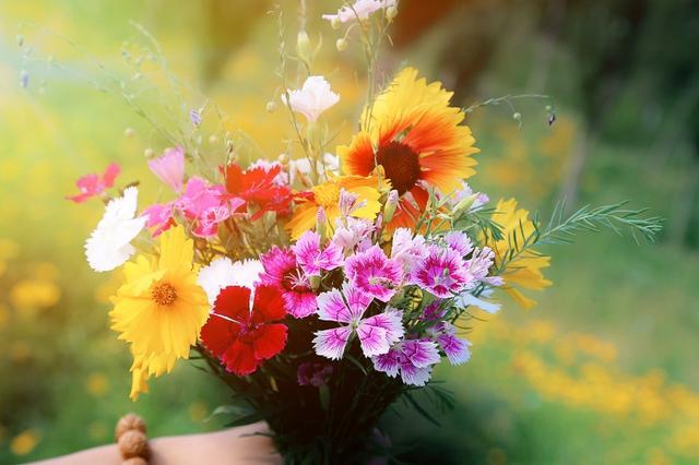 相爱的人适合一起风花雪月,宠你的人才适合一起慢慢变老