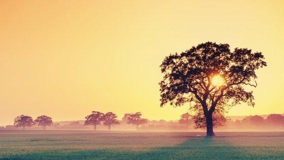 不是所有的痛,都可以呐喊;不是所有的爱,都可以表白