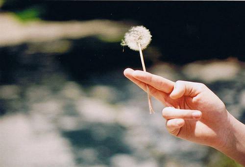 活着,不经历痛苦,就不会成长
