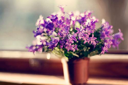 一生之中,总有那么一个人,让你痛,让你笑,让你无所适从