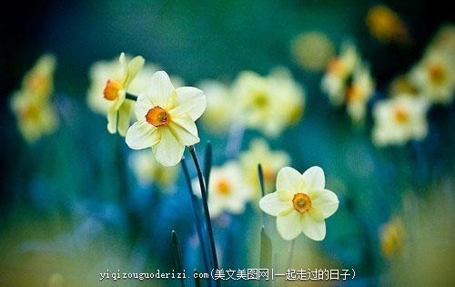 诗人意味深长的说过:冬天来了,春天还会远吗?