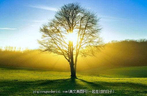早安心语:多一份洒脱,少一份抱怨,让自己在豁达的心态中,感悟生命,解读生活