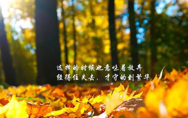 心存希望,幸福就会降临你;心存梦想,机遇就会笼罩你