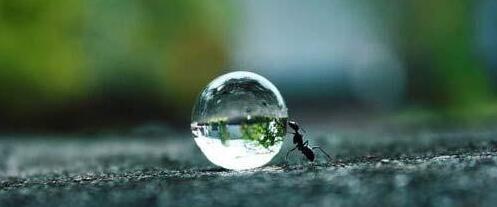 早安心语:当你在转圈的时候,这个世界很大,可是如果你勇往直前,这个世界就很小