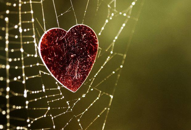 10条关于爱情的感悟句子