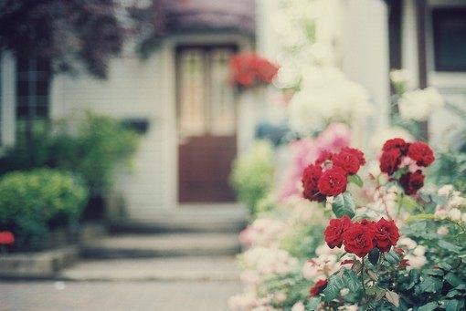 当你遇到对的那个人,不是强烈的动心,而是长久的安心(优美爱情语录句子)