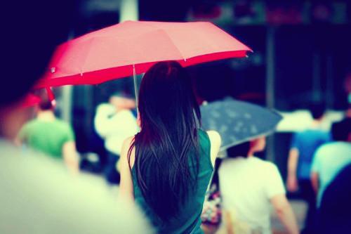 人生是一场遗忘,爱情是一种伤感(伤感爱情语录句子)