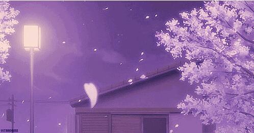 牵手走过樱花雨 - 经典美文欣赏